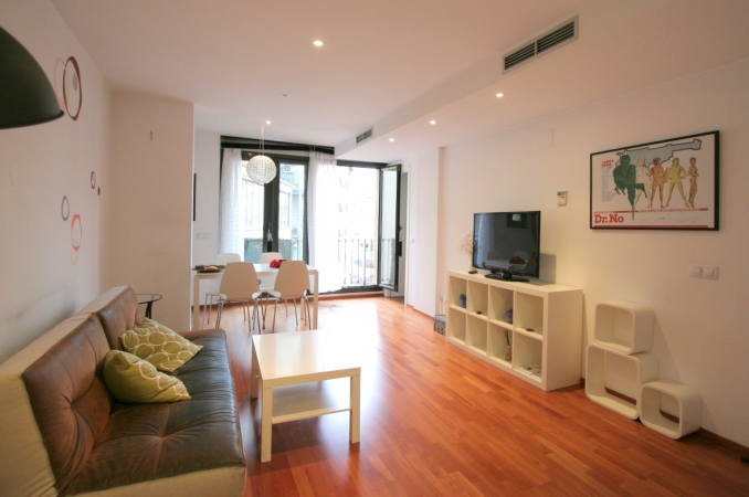 charming 2 bedroom apartment near plaza catalunya